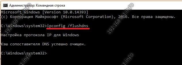 windows 10 сбросить кэш днс